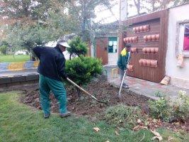 تدابیر سازمان سیما،منظر و فضای سبز ملارد در فصل پاییز