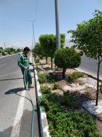اقدامات واحد حفظ و نگهداری فضای سبز